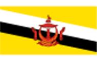 文莱个人旅游单次签证